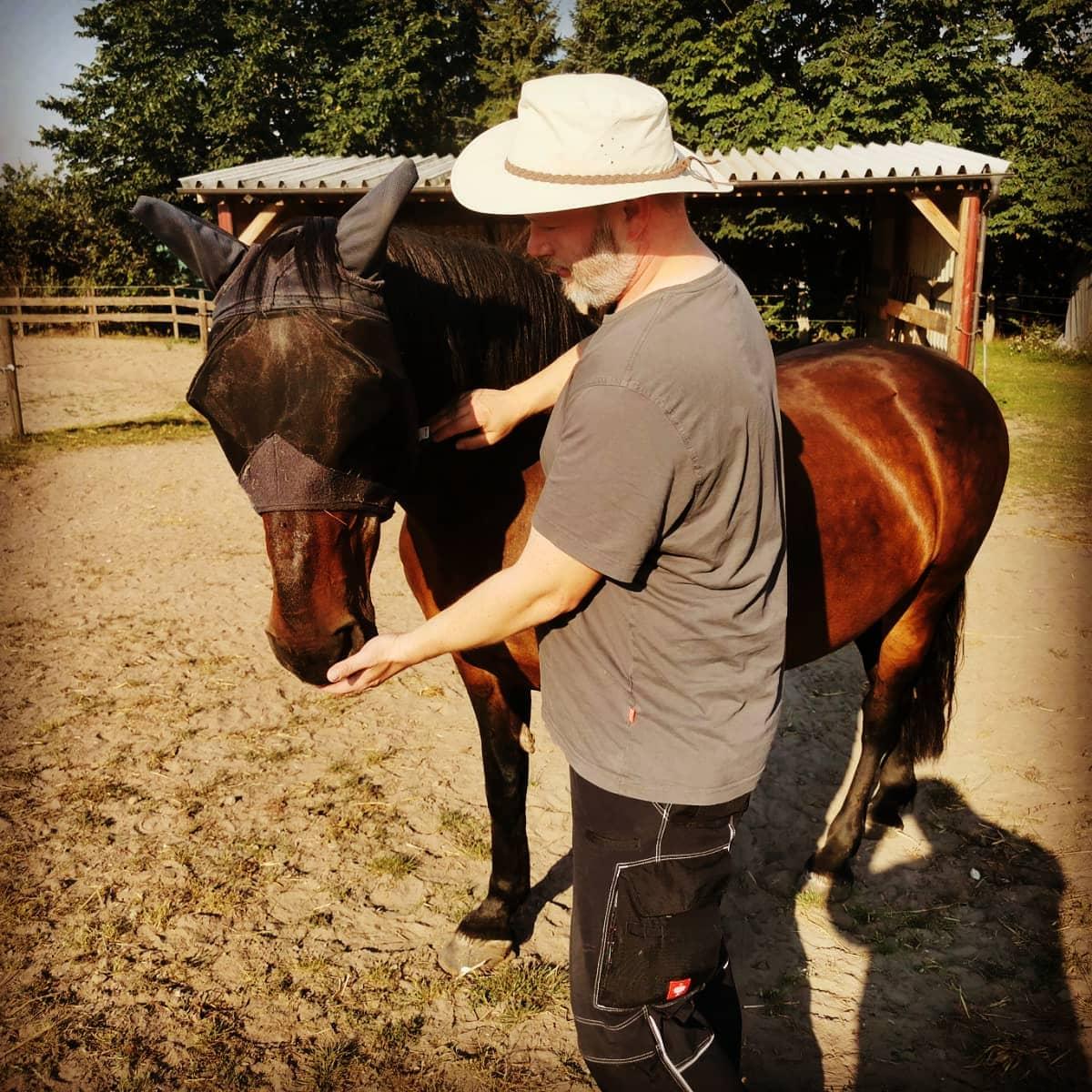 Ein bisschen bei den Pferden helfen.